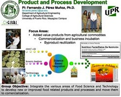 UPRM Product and Process Development